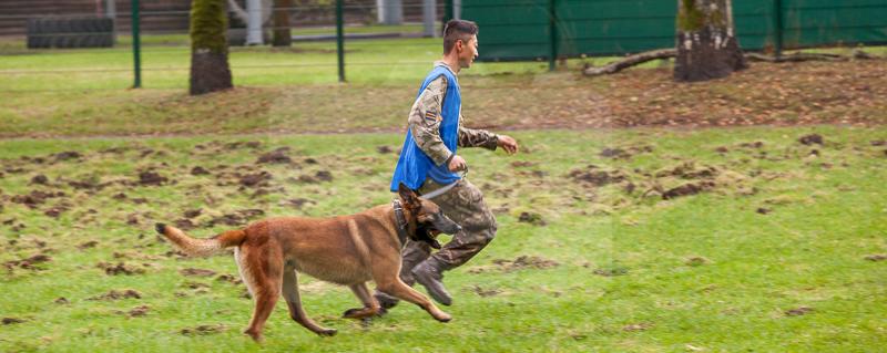 2016_10_20 1st Military Working Dog Regiment-121740