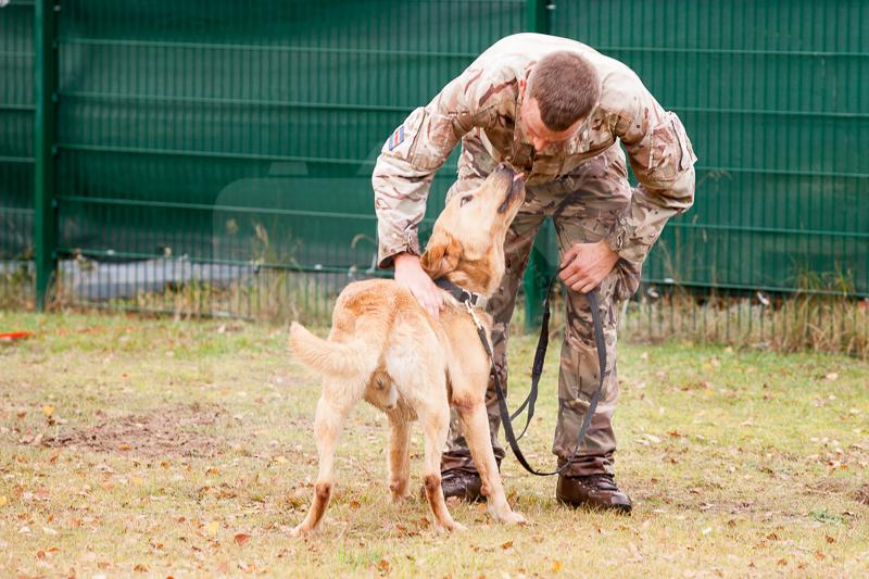 2016_10_20 1st Military Working Dog Regiment-123959