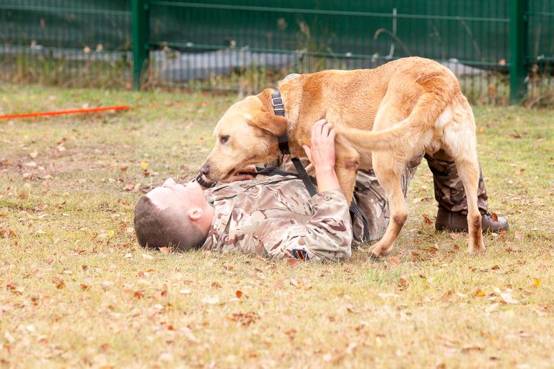 2016_10_20 1st Military Working Dog Regiment-124002