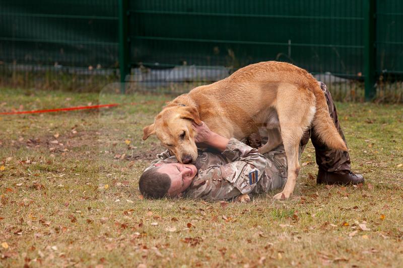 2016_10_20 1st Military Working Dog Regiment-124004