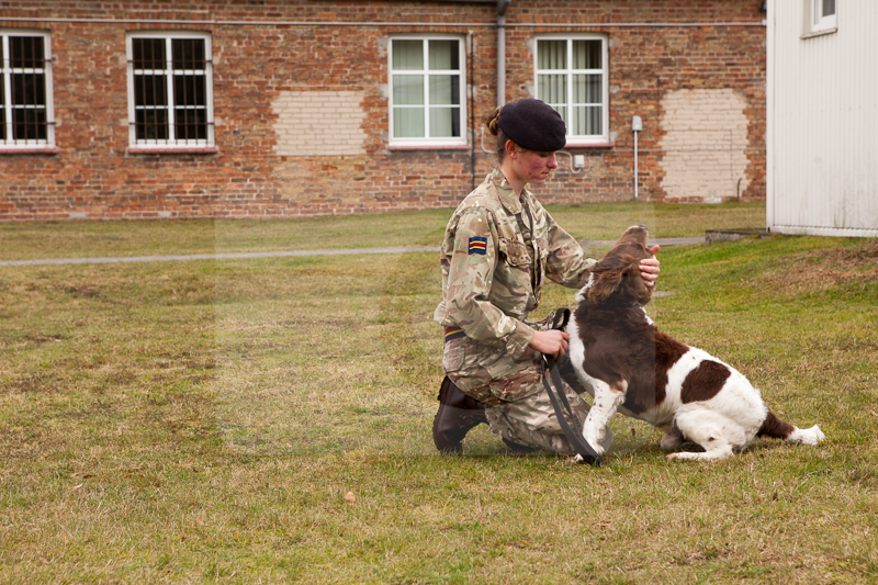 2016_10_20 1st Military Working Dog Regiment-132230
