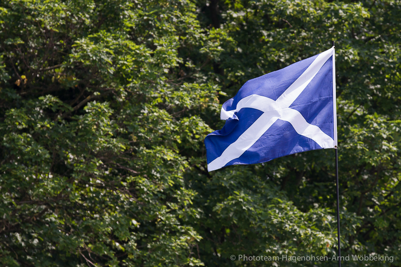 0_2015_Highland_Games_Hameln-3723