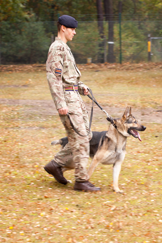2016_10_20 1st Military Working Dog Regiment-102012