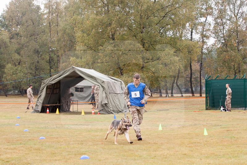 2016_10_20 1st Military Working Dog Regiment-104615