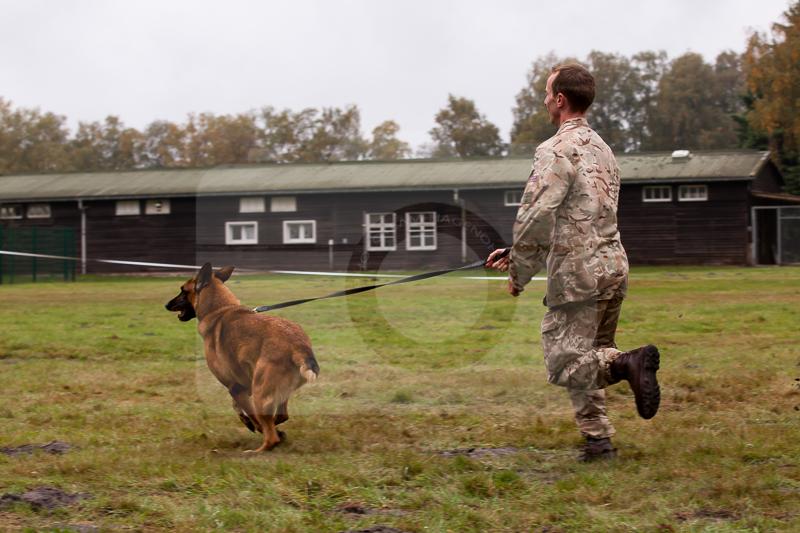 2016_10_20 1st Military Working Dog Regiment-110002