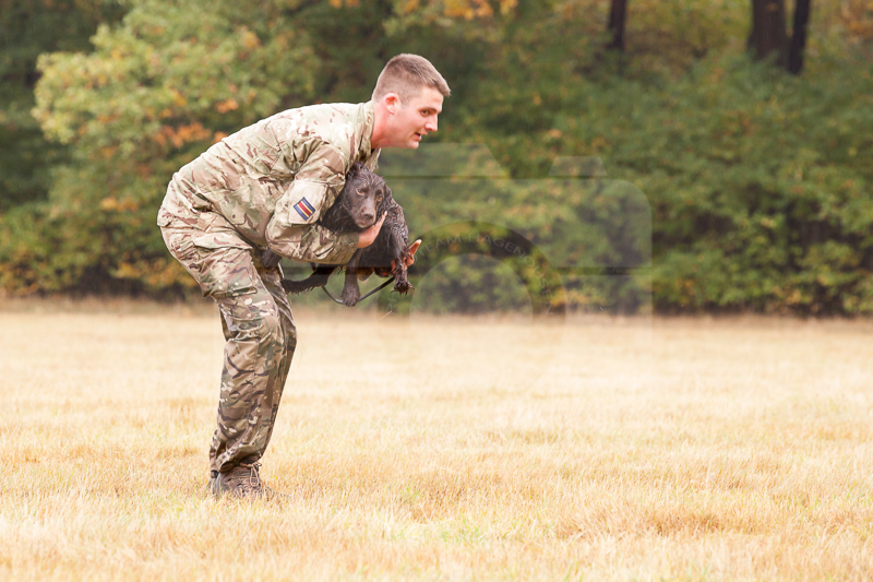 2016_10_20 1st Military Working Dog Regiment-114706