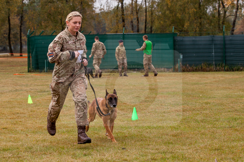 2016_10_20 1st Military Working Dog Regiment-120817