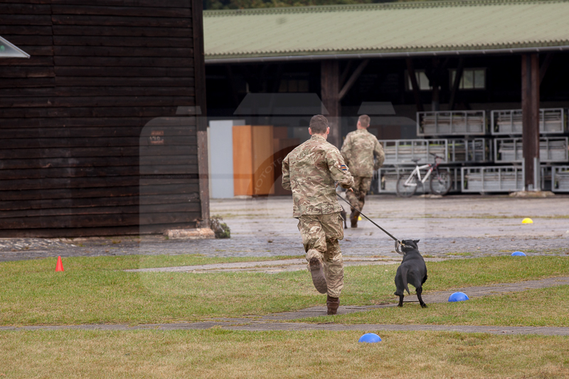 2016_10_20 1st Military Working Dog Regiment-121217