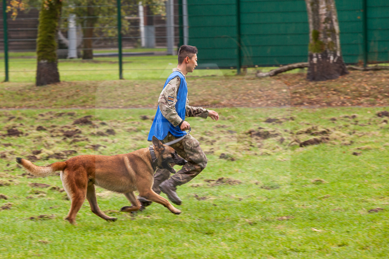 2016_10_20 1st Military Working Dog Regiment-121740-2