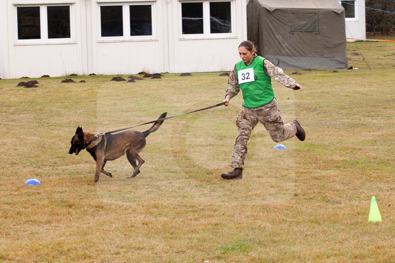 2016_10_20 1st Military Working Dog Regiment-123614