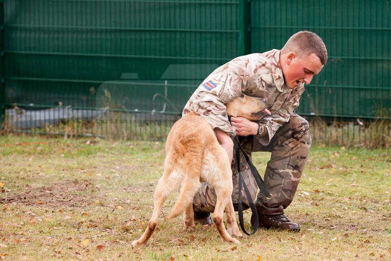 2016_10_20 1st Military Working Dog Regiment-124000
