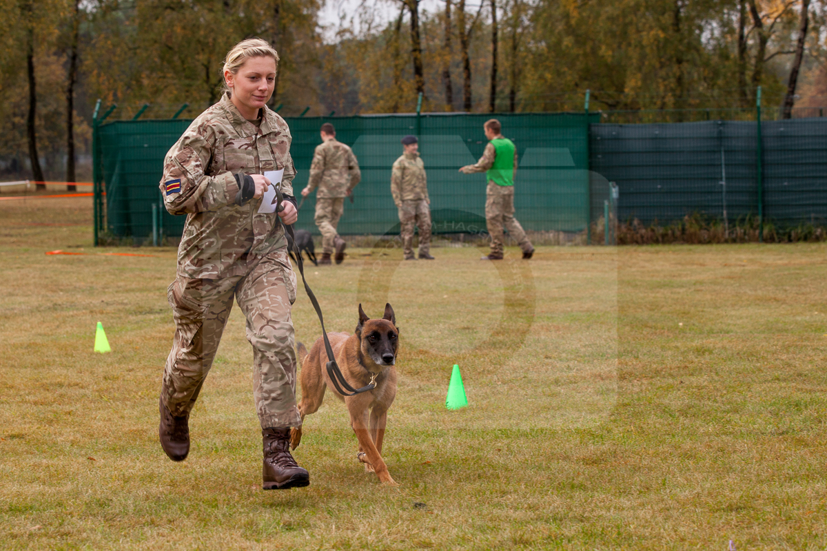 2016_10_20 1st Military Working Dog Regiment-120817