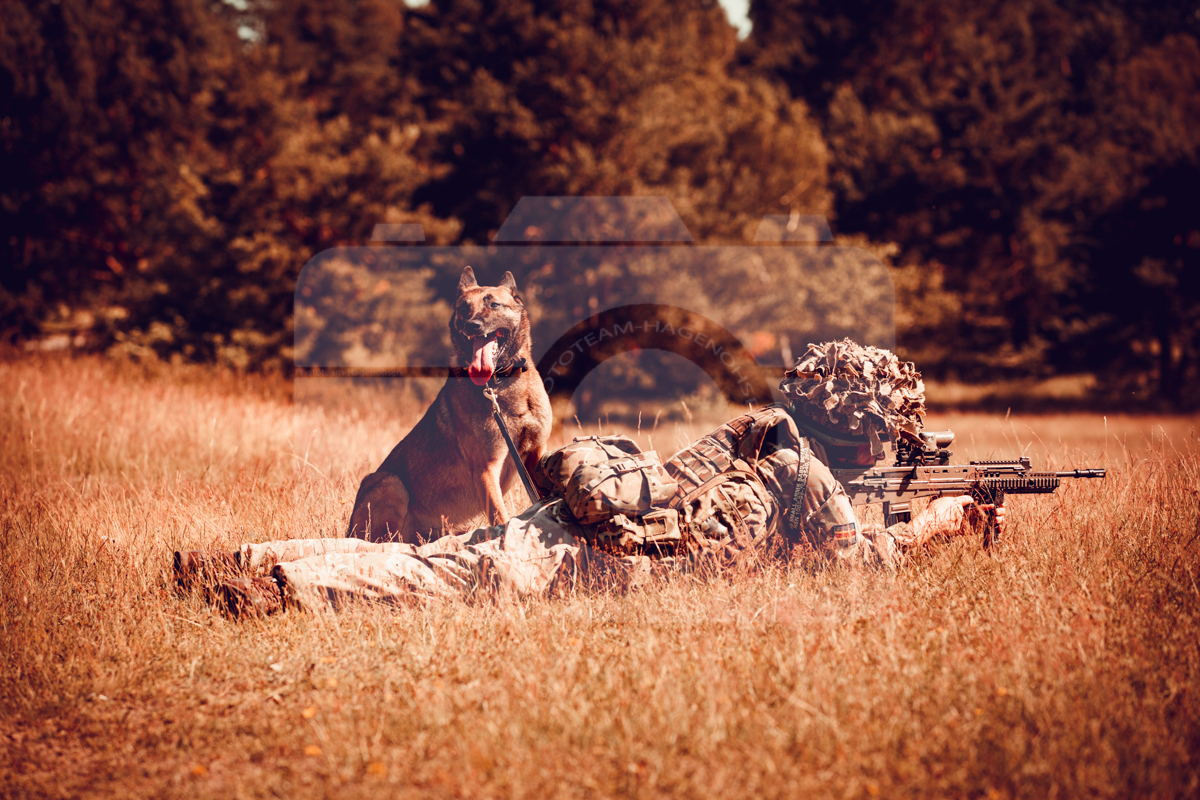 Day out with 102 Squadron 1 Military Working Dog Regiment